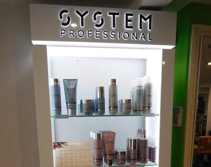 System P